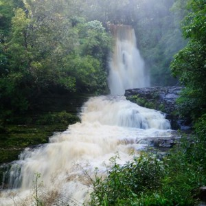 McLean Falls (The Catlins)